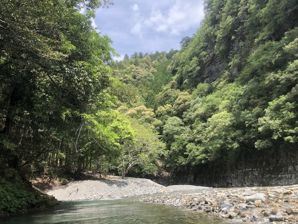 赤木川の渓相
